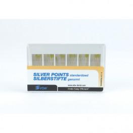 Silberstifte 30 Stück ISO 020 VDW