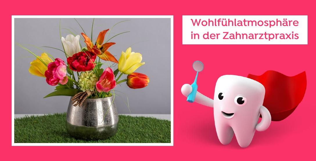 Wohlfühlambiente in der Zahnarztpraxis - schöne Pflanzen ganz ohne aufwendige Pflege